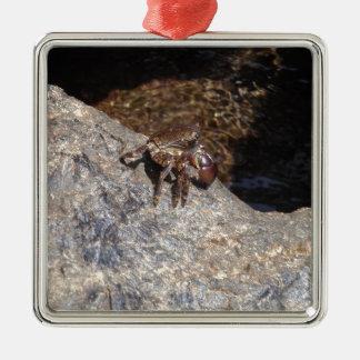 Crab In The Black Sea Silver-Colored Square Decoration