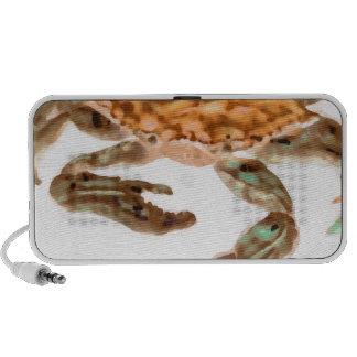 Crab on Beach PC Speakers