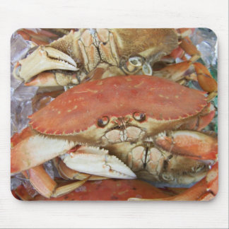 Crab on the San Francisco Wharf Mouse Pad