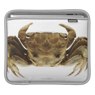 Crab on white background iPad sleeve