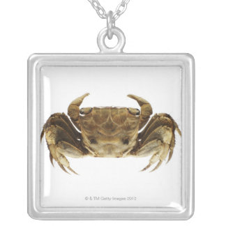 Crab on white background silver plated necklace
