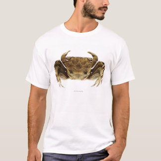Crab on white background T-Shirt