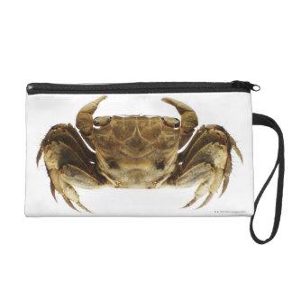 Crab on white background wristlet