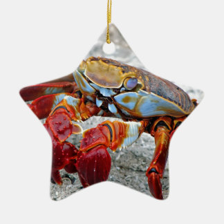 Crab photo christmas ornament