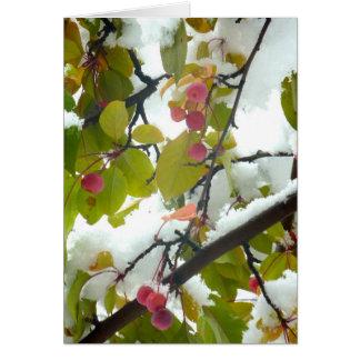 Crabapple:Snow Card