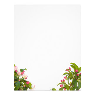 Crabapple Tree Blossoms Letterhead Paper 21.5 Cm X 28 Cm Flyer