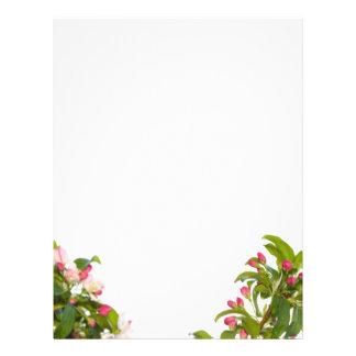 Crabapple Tree Blossoms Letterhead Paper Custom Flyer