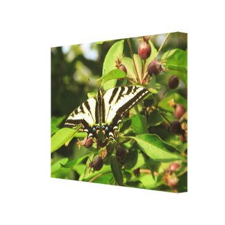 Crabapples and Butterfly Stretched Canvas Prints