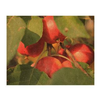 Crabapples Cork Paper Print
