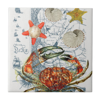 crabby map starfish tile