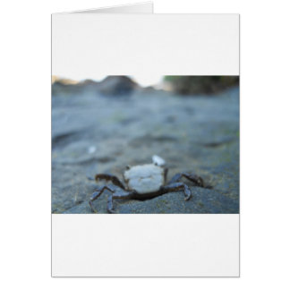 Crabby Smile Card
