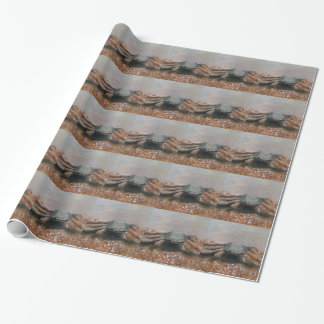 CRABBY Wrapping Paper