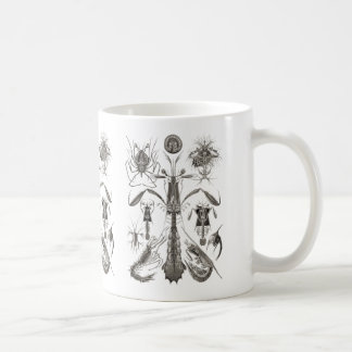 Crabs, Lobster, & Shrimps Coffee Mug