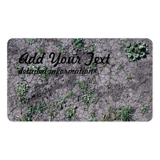Cracked Dirt Pack Of Standard Business Cards