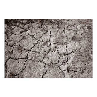 Cracked Earth, Dayton, Nevada Poster