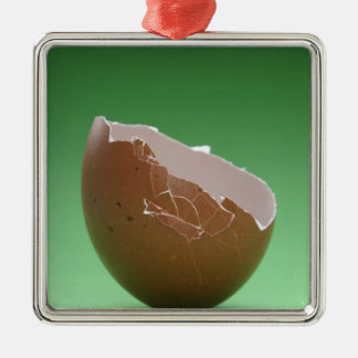 Cracked Egg Shell Christmas Ornament