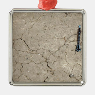 cracked insect christmas ornament