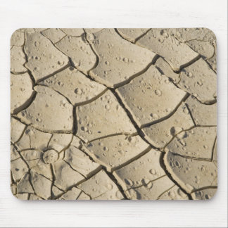 Cracked Mud formation in the Valley floor of 2 Mouse Mat