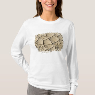 Cracked Mud formation in the Valley floor of 2 T-Shirt