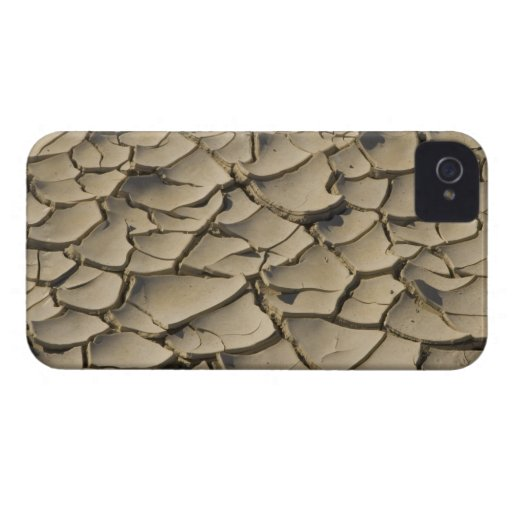 Cracked Mud formation in the Valley floor of Blackberry Case