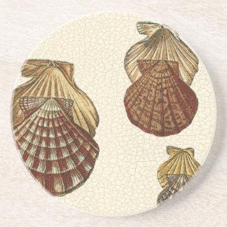 Crackled Antique Shells Coaster