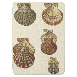 Crackled Antique Shells iPad Air Cover
