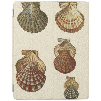 Crackled Antique Shells iPad Cover