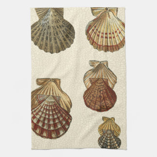 Crackled Antique Shells Tea Towel