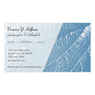 Cracks in the Ice Business Card Template