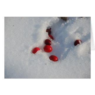 Cranberries in the Snow Greeting Card