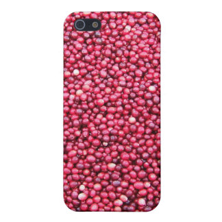 Cranberries Cover For iPhone 5