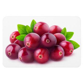 Cranberries Magnet