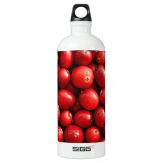 Cranberries SIGG Traveller 1.0L Water Bottle