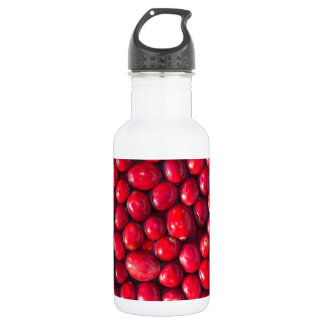 Cranberry 532 Ml Water Bottle