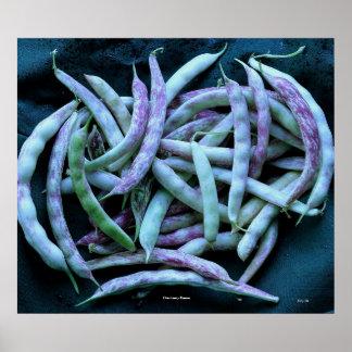 Cranberry Beans Poster