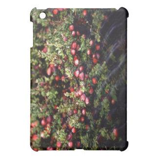 Cranberry Bog Cover For The iPad Mini