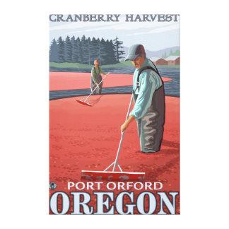Cranberry Bogs Harvest - Port Orford, Oregon Canvas Print