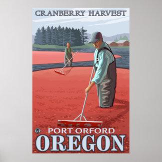 Cranberry Bogs Harvest - Port Orford, Oregon Poster