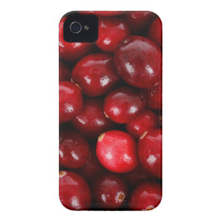 cranberry case iPhone 4 cover