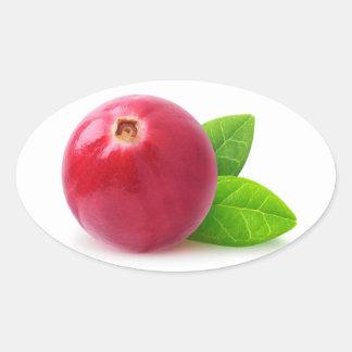 Cranberry Oval Sticker