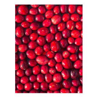 Cranberry Postcard