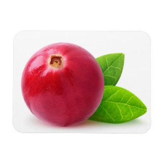 Cranberry Rectangular Photo Magnet
