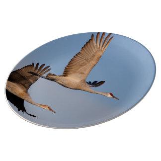 crane porcelain plates