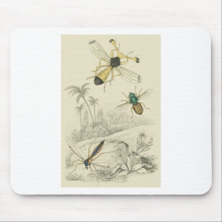 Cranefly, Fly, Guinea fly Mouse Mat