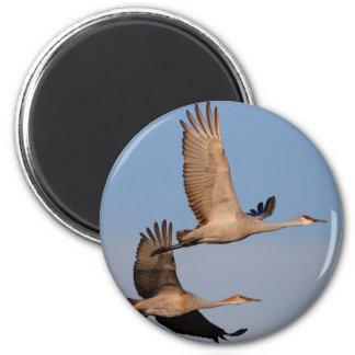 cranes 6 cm round magnet