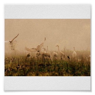 Cranes in the Mist Poster
