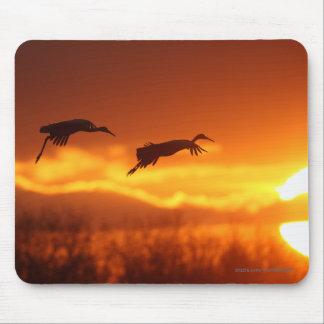 cranes mouse pad