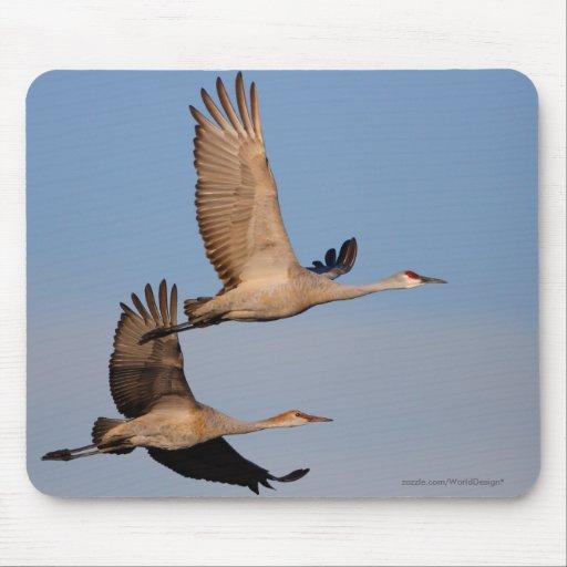 Cranes Mousemats