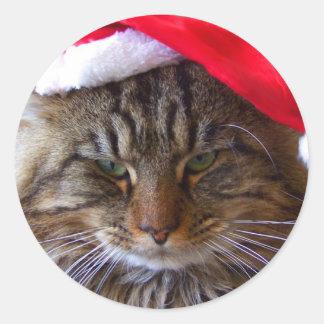 Cranky Christmas Cat Stickers