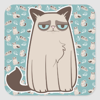 Cranky Kitty Cat Standing Stickers